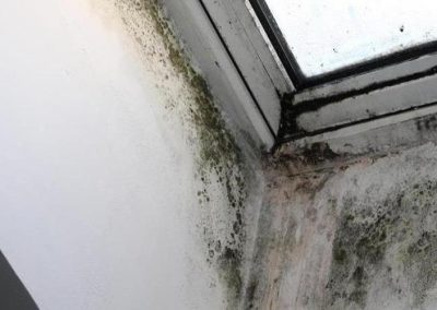 Mold infestation on a window in a residential home