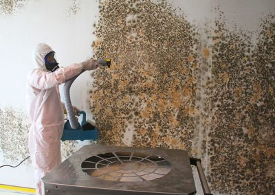 Process of Mold Removal & Remediation by Disaster Restoration Singapore