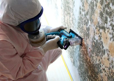 Inspection of Mold Contaminated Walls in a Hospital in Singapore