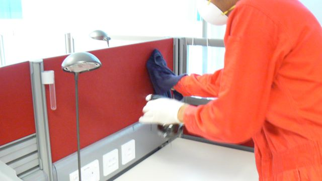 Mold Decontamination of Mouldy Surface