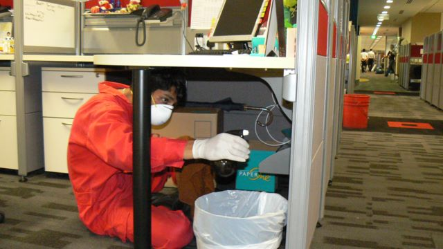 Mold and Mildew Specialists at Work to Remove Mold Spores