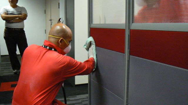 Professional Mould Cleaners in Office