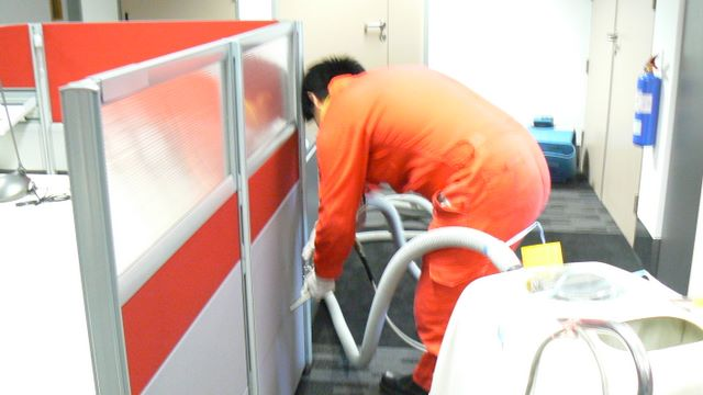 Restoration of Mold using Professional Mold Removal Method