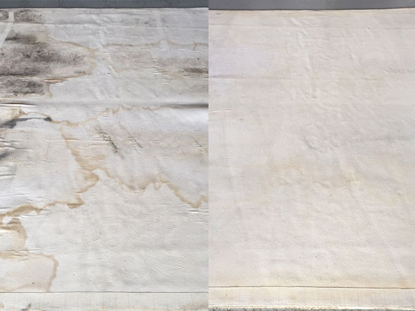 Water Damaged Carpet Restoration Singapore | Before and After