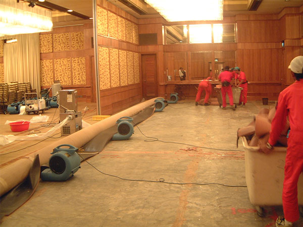 Water Damaged Carpet Restoration Singapore | Deployment of Dehumidifiers and Air Movers