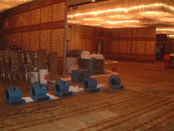 water-damaged-carpets-restorative-dehumidifier-singapore