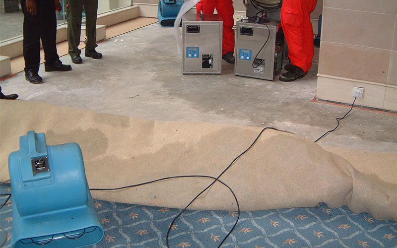 Water Damaged Carpet Restoration | Disaster Restoration Singapore